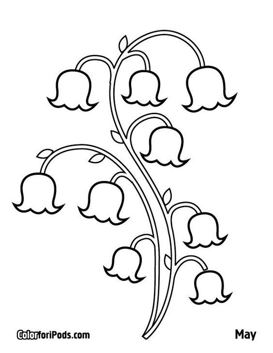 Lily Of The Valley Coloring Page Lily Of The Valley Flower