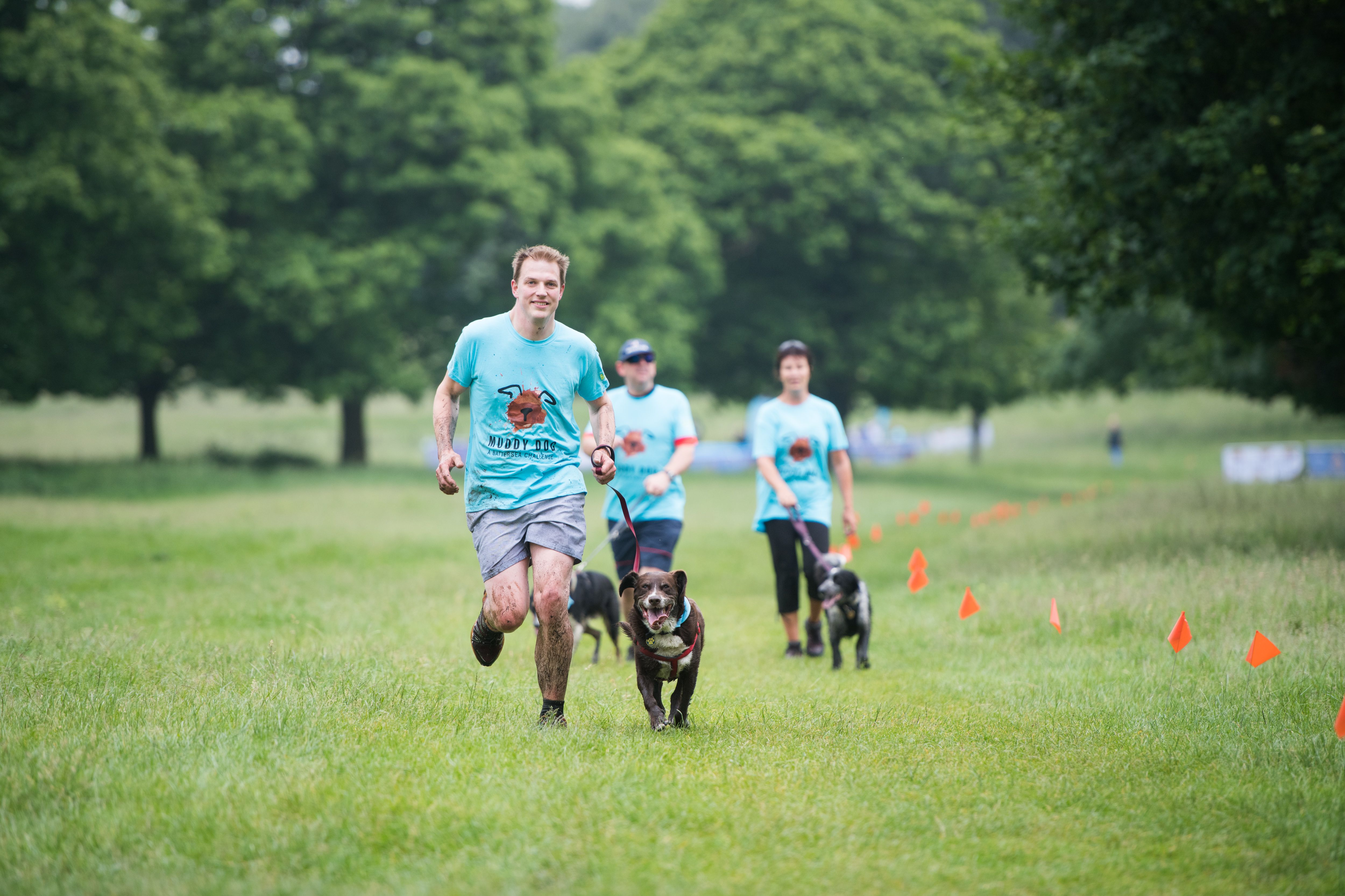Pin by Battersea on Muddy Dog Challenge Four legged