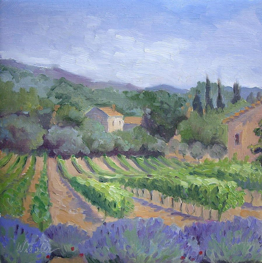 Saint Ser Vineyard Vineyards Amp Wine Country Art