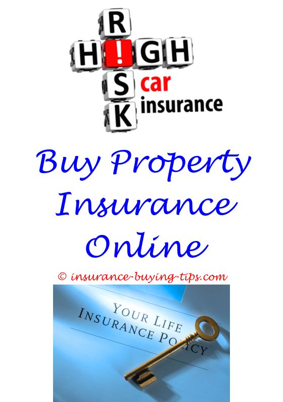 Www Geico Com Quote Beauteous How To Buy Your Own Insurance In Nh  Auto Insurance Quote Before