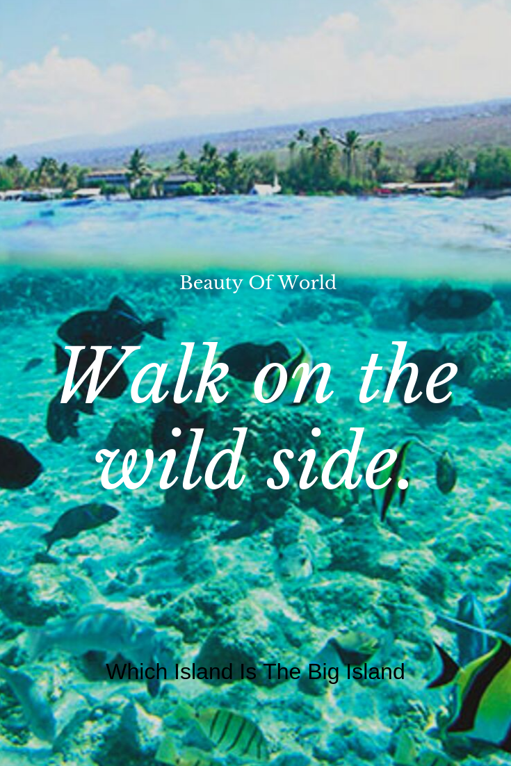 Which Island Is The Big Island Big Island Island Tourist Places