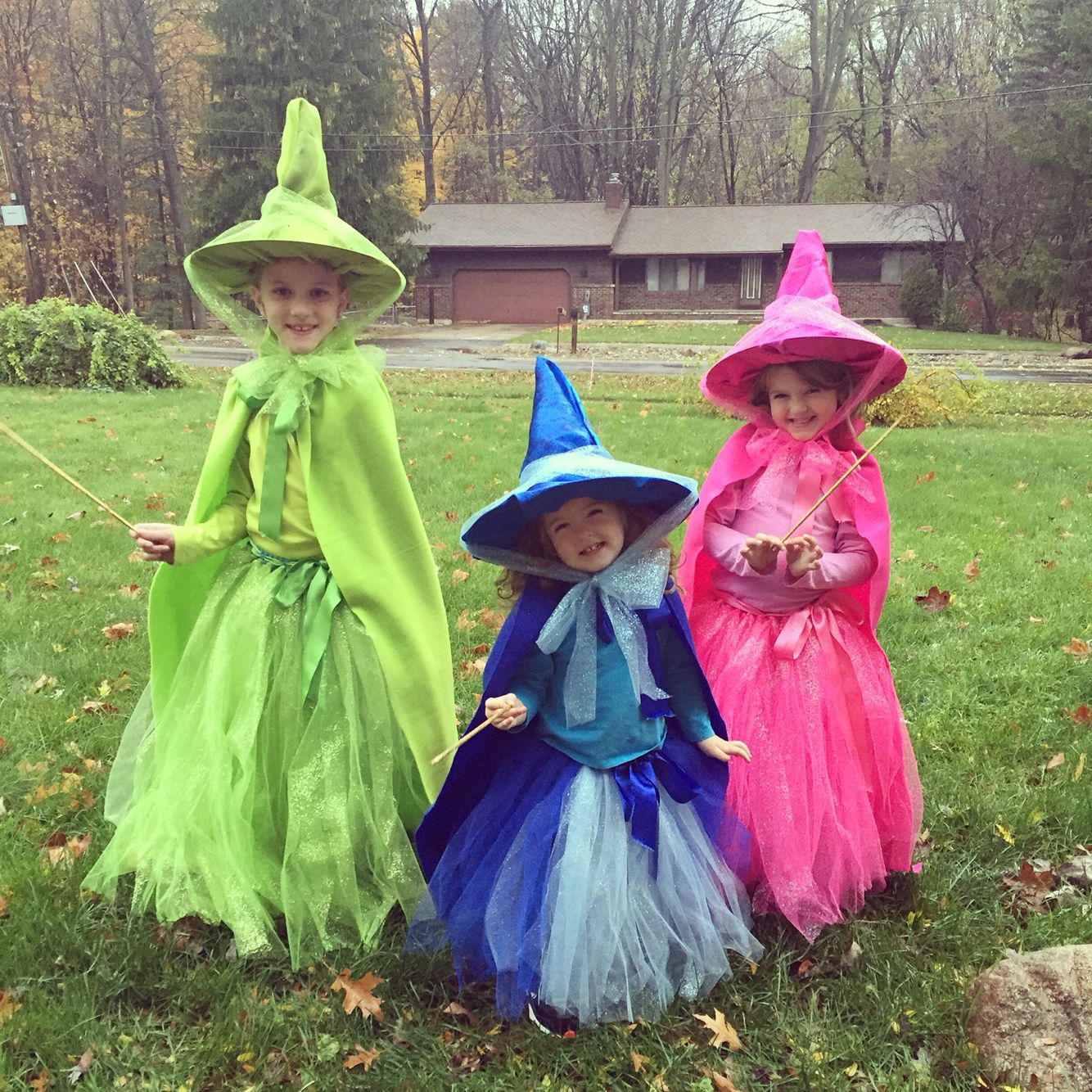 Diy Flora Fauna And Merryweather Our Very Own Fairy Godmothers
