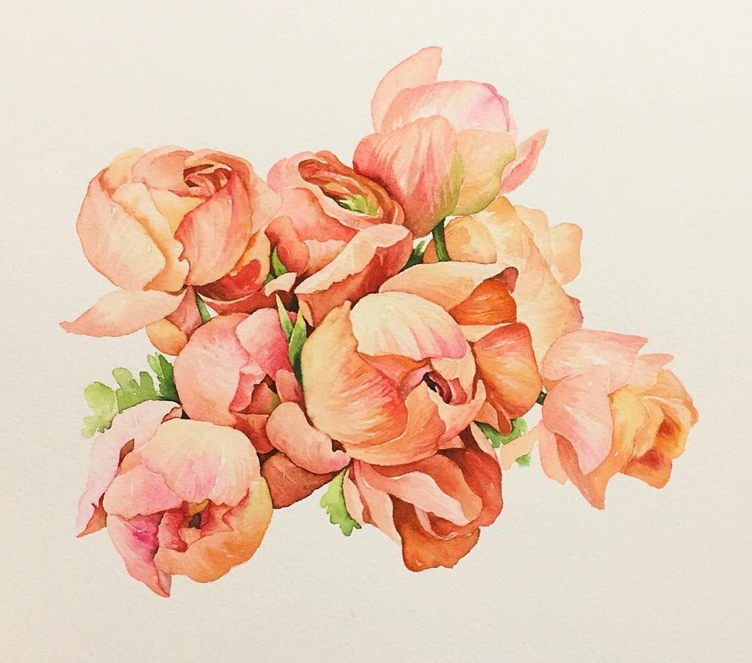 꽃모닝 . . #꽃#꽃스타그램#꽃그림#그림#그리기#수채화#작약라넌#라넌큘러스#식물#아트북#드로잉#일러스트#셀스타그램#셀피 #leegreeem#flower#flowerstagram#instadraw#coloring#painting#watercolor#instadaily#instadraw#daily#drawing#illust#illustration#selfie