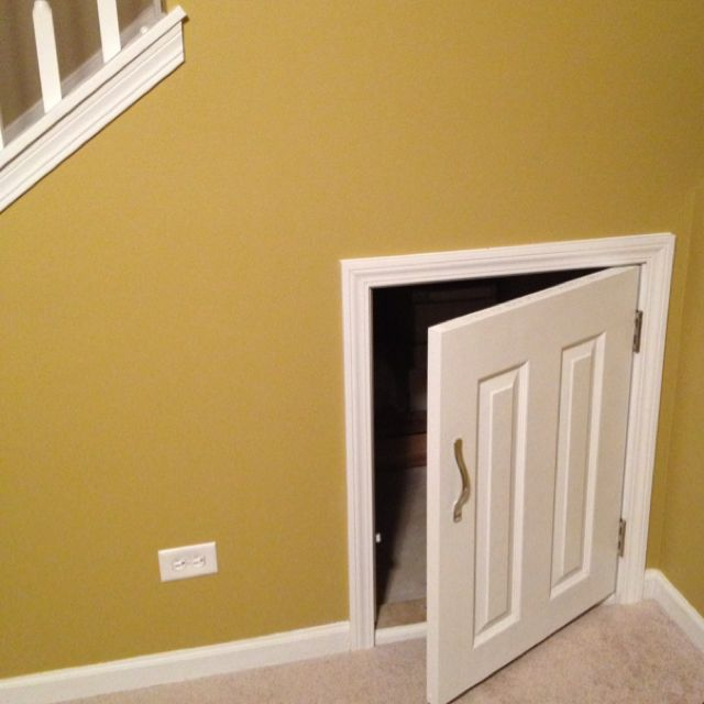 access door for under stair storage