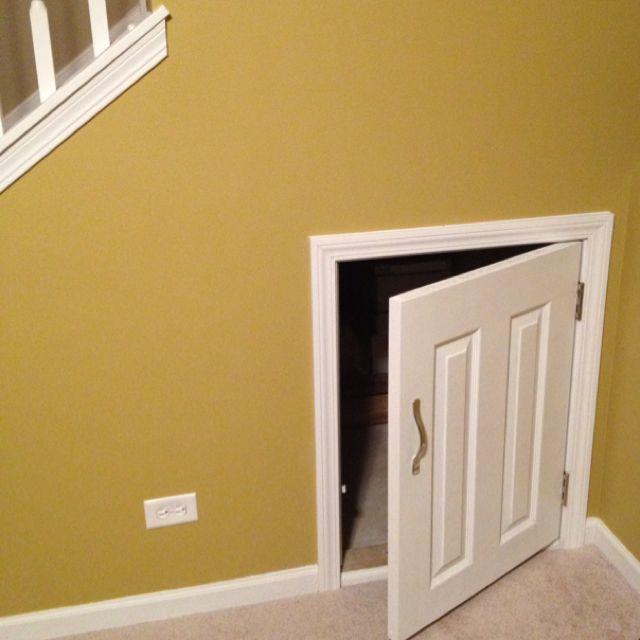 access door for under