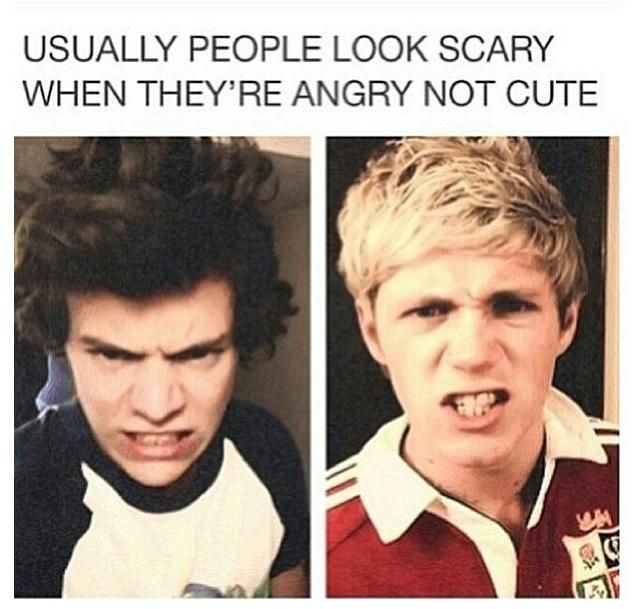 """Even my little 6 yr old sister said """"He looks so cute when hes mad"""" She didnt even read it... @Niall Horan @Niall Horan @Niall Horan @Niall Horan"""