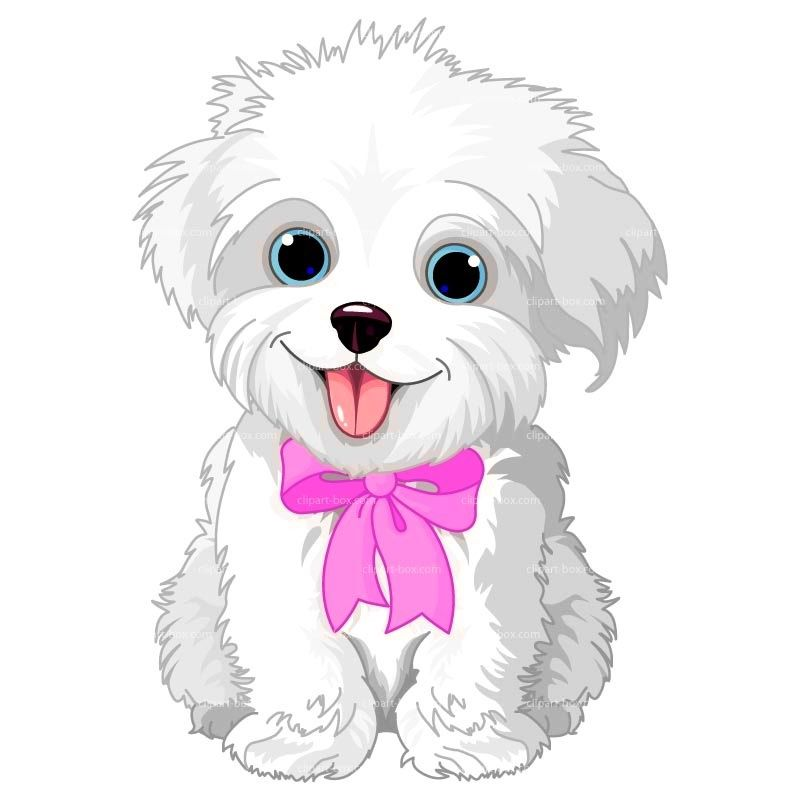 maltese dog clipart - photo #4