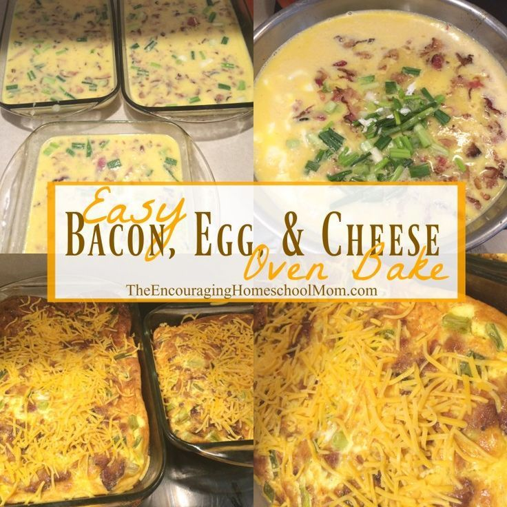 Easy Bacon, Egg, and Cheese Oven Bake Recipe | Large Family Style!