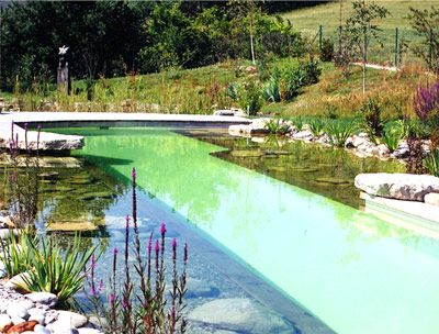 Piscine Naturelle | Water Rivers Beaches Pools | Pinterest