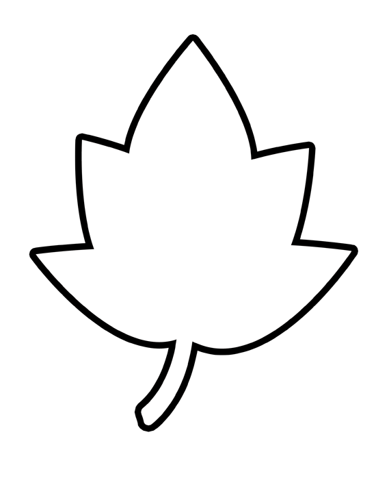 nice maple leaf outline template the hippest galleries mcoloring