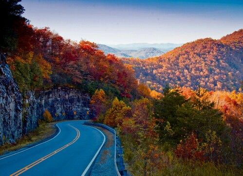 North Georgia mountains!