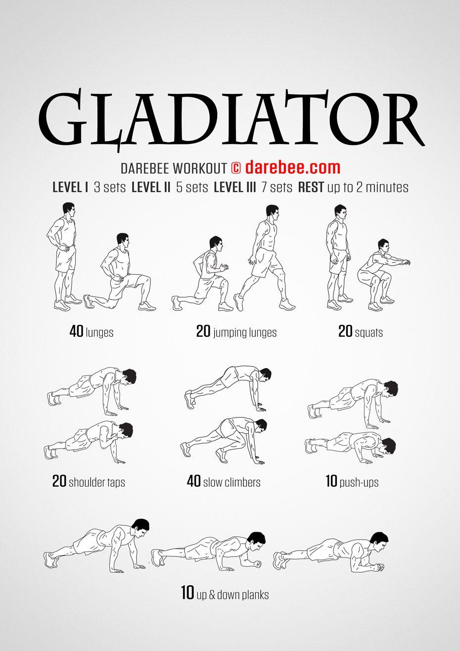 rigagreen - Revoflex xtreme exercise guide pdf