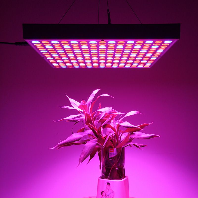 Wholesale 45watt Led Grow Light1 From China Led Grow Lights Best Led Grow Lights Red Led Lights