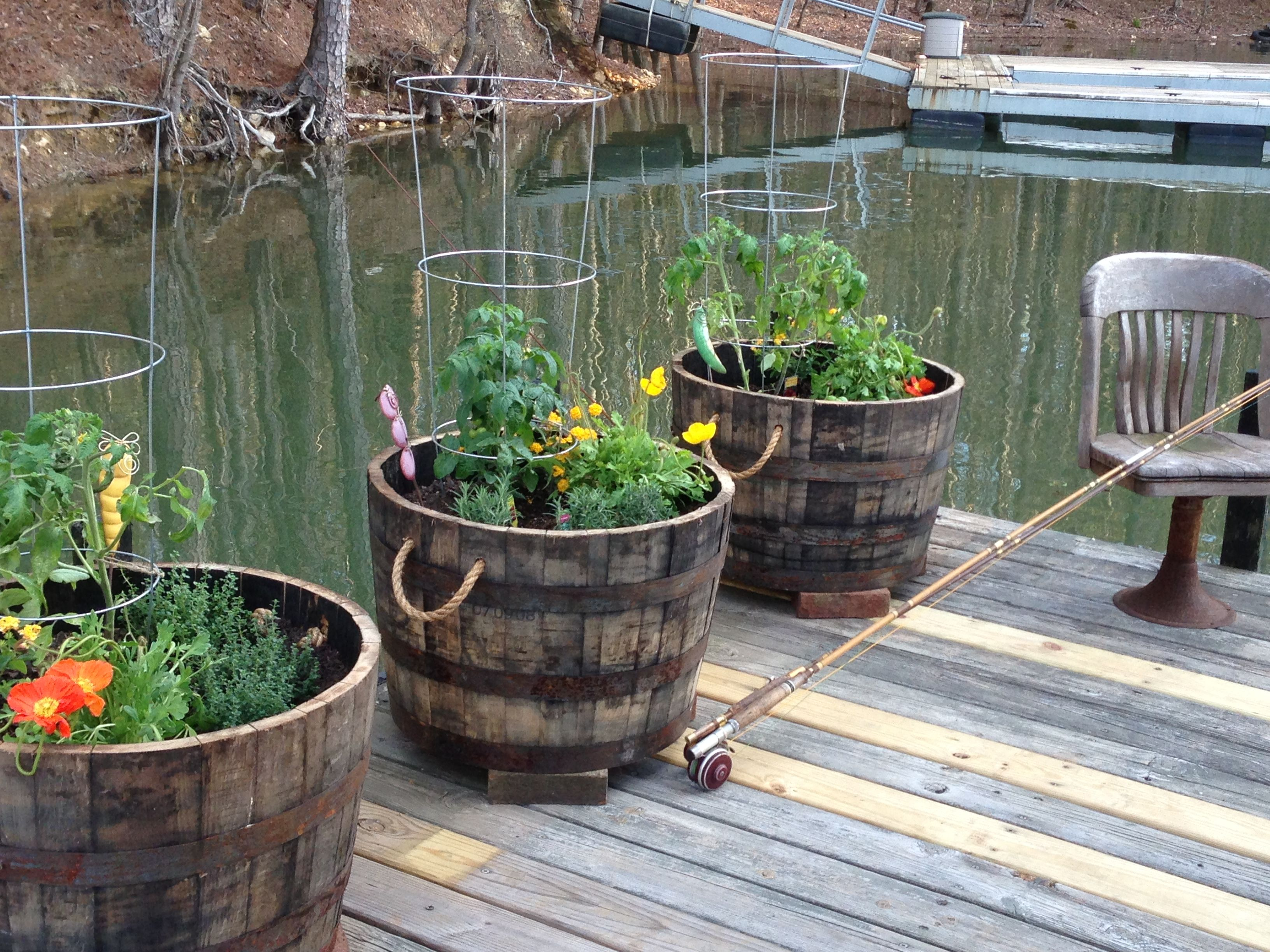 Whiskey barrel planters: drill drainage holes in bottom, layer ...