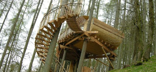 Best Turn Any Tree Into A Spiral Staircase Google Search 400 x 300