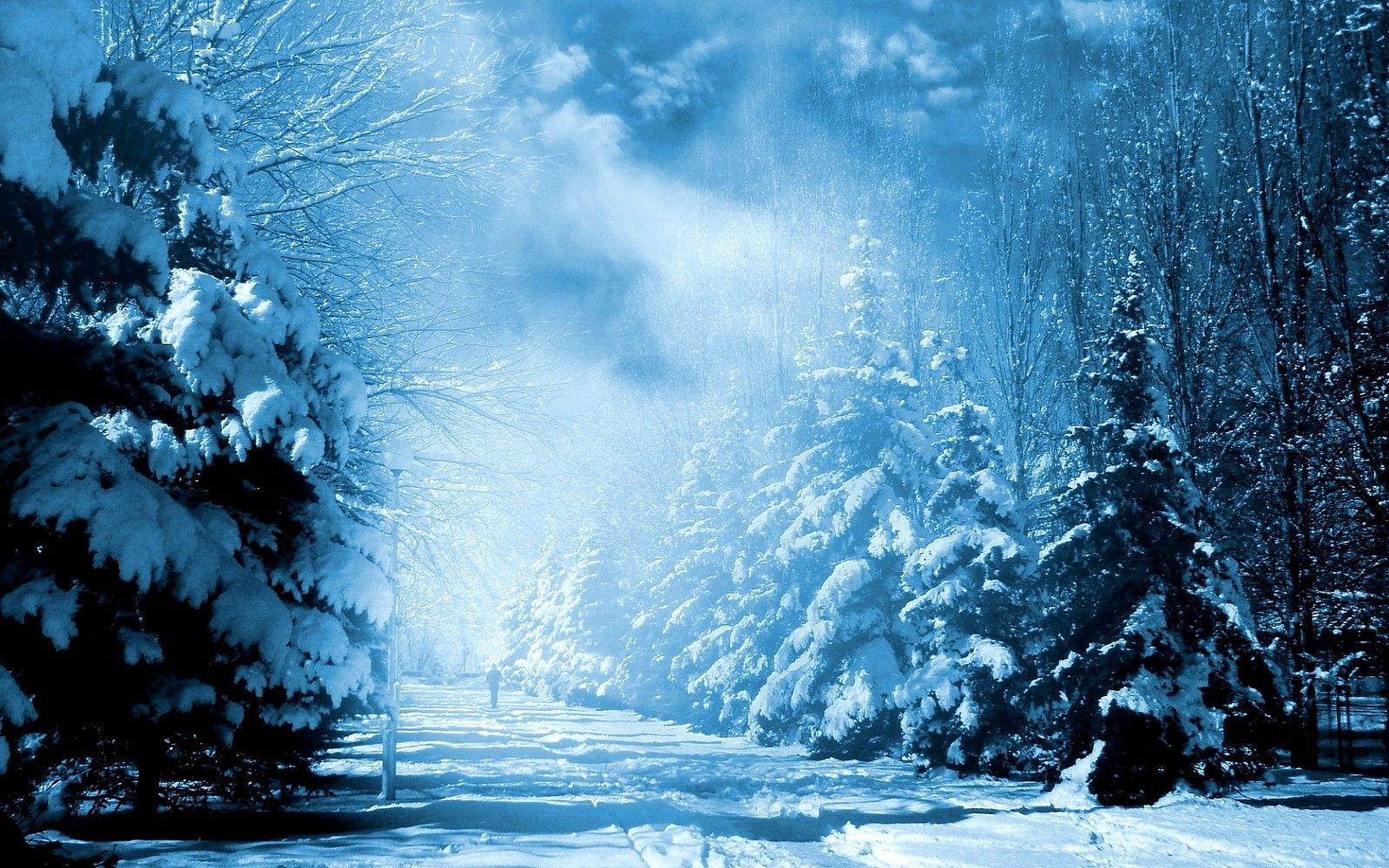 snow fantasy | Fantasy HD Pictures Winter Snow And Fantasy Wallpaper ... for Fantasy Winter Forest Wallpaper  155fiz