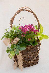 Pink Baskets & Gardens « myurbanpetals.wordpress.com