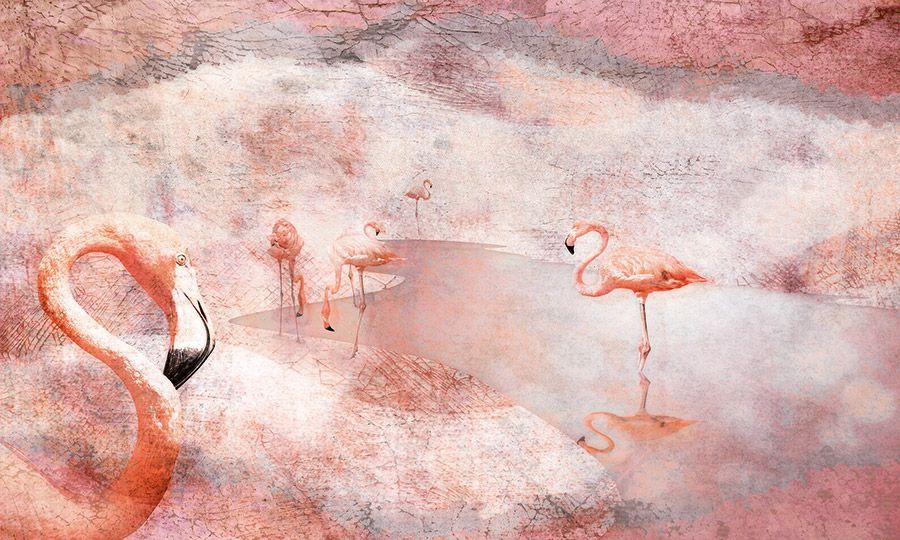 Carta da parati con fenicotteri rosa. Wallpaper