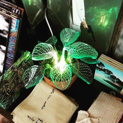 LED-planten fra ledtrend. Du finner den bare hos oss. Produsert og designet i USA  #ledtrend #ledplante #plante #planter #blader #interiormagasinet #interiordesign #pynttilhuset #pynt #interiørdetaljer #interiormagasinet #huspynt #hagepynt #hageparty #ledsquad #interior123 #interior4all