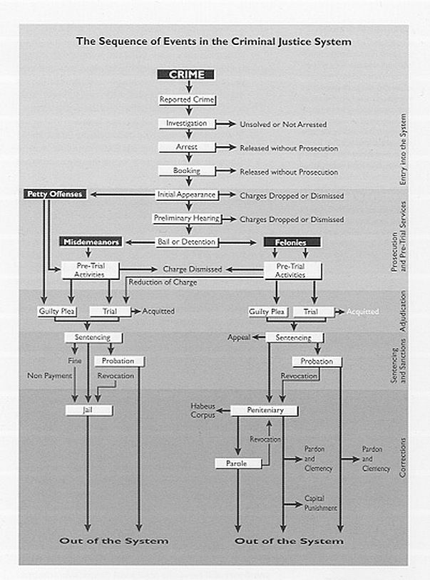 Criminal Trial Flow Chart Paralegal Law Criminal Justice