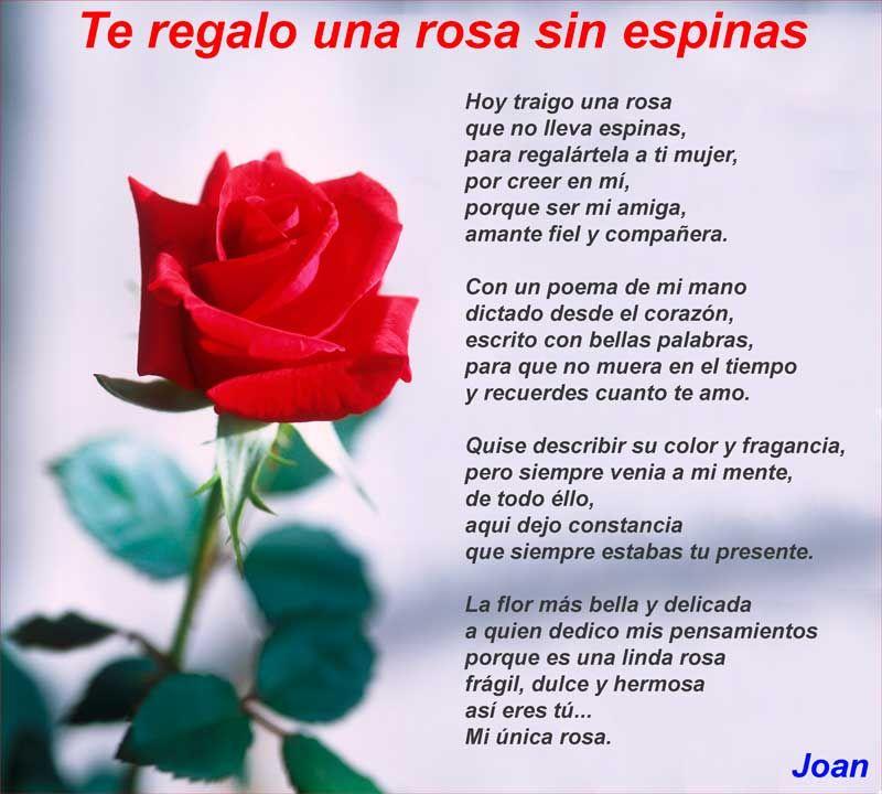 Poemas De Amor Cortos Para Enamorar Muy Romanticos En 2020
