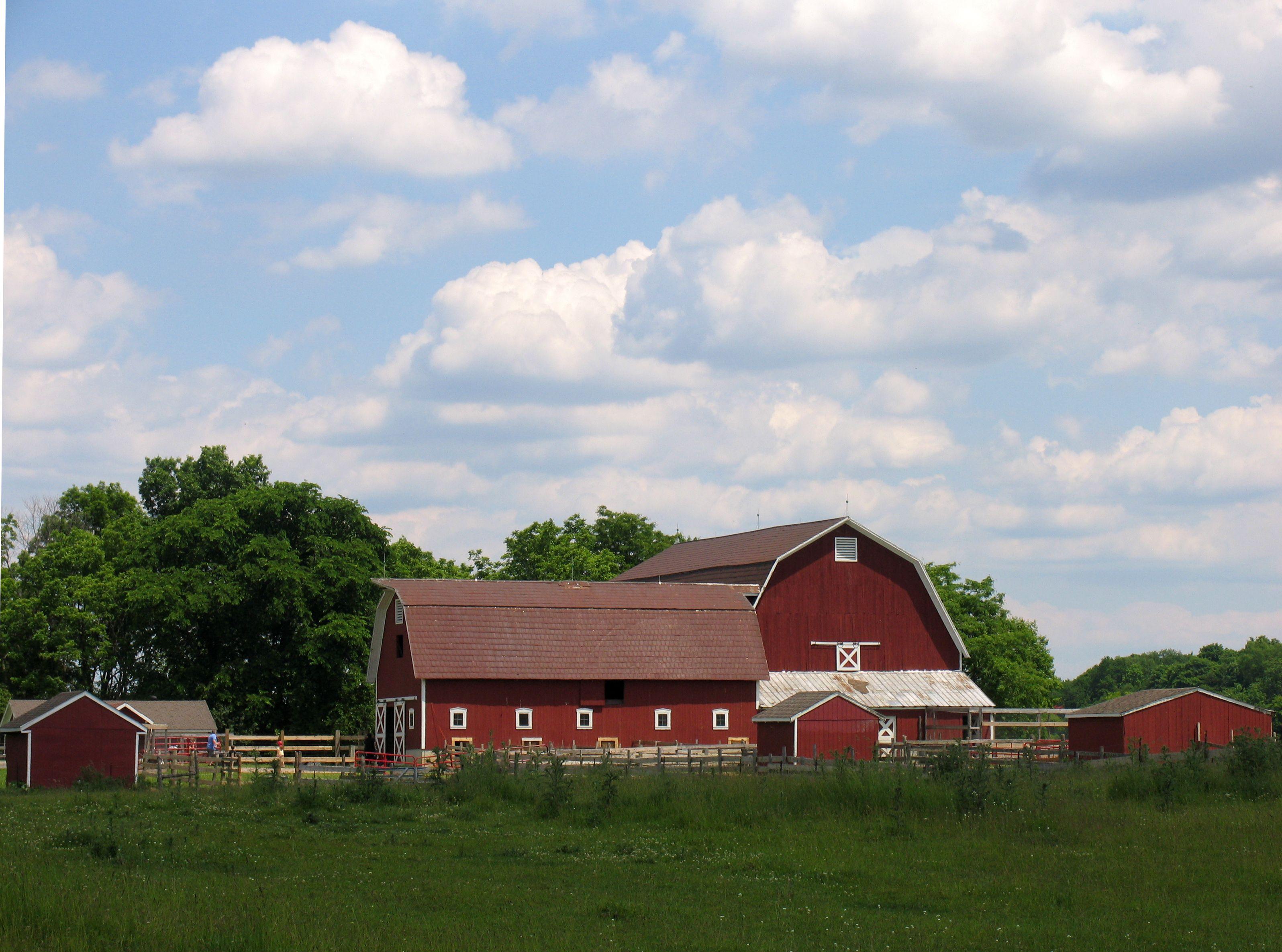 Iowa farms