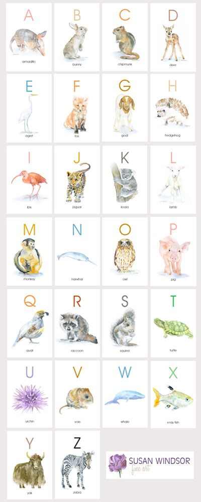 Animal Alphabet Flash Cards Watercolor Animals Abc Watercolor Flash Cards A Z Alphabet Flashcards Animal Alphabet Watercolor Animals
