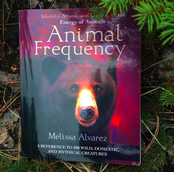Loved Animal Frequency: Identify, Attune, and Connect to the Energy of Animals by Melissa Alvarez, listed on the #MomentswithMarianne #bookclub http://www.mariannepestana.com/book-club/  #bookstagram #book #books #booklove #bookworm #bibliophile #animals #energy #animalsofinstagram #energyhealing #author