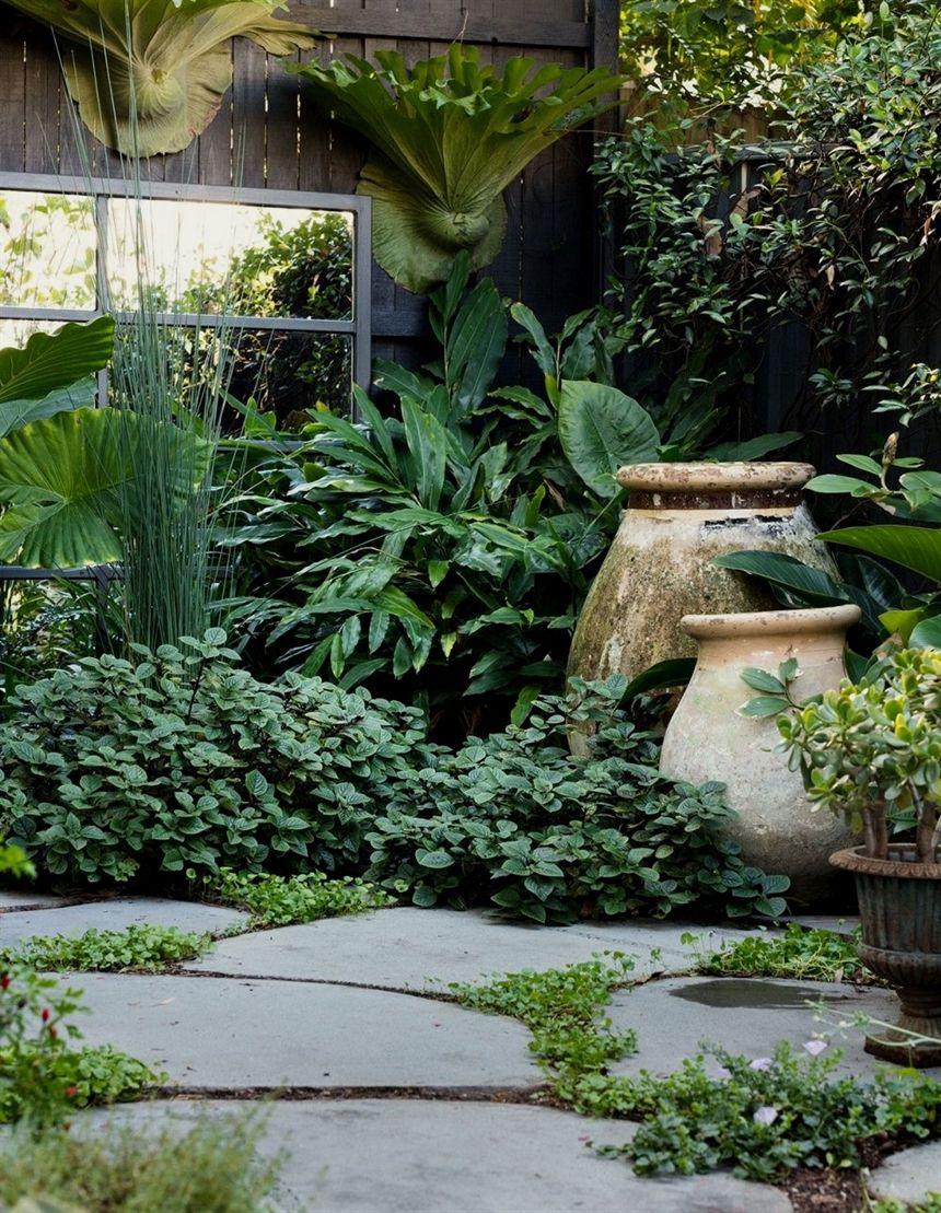 Lush Sydney Courtyard Garden #LandscapeDesign   Garden ...