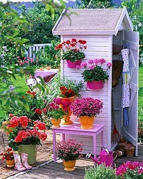 Bright pretty little garden tool shed with lots of potted for Pretty garden sheds