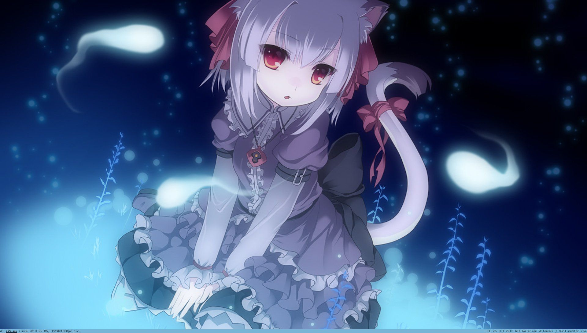 Anime Cat Wallpapers Wallpaper Zone