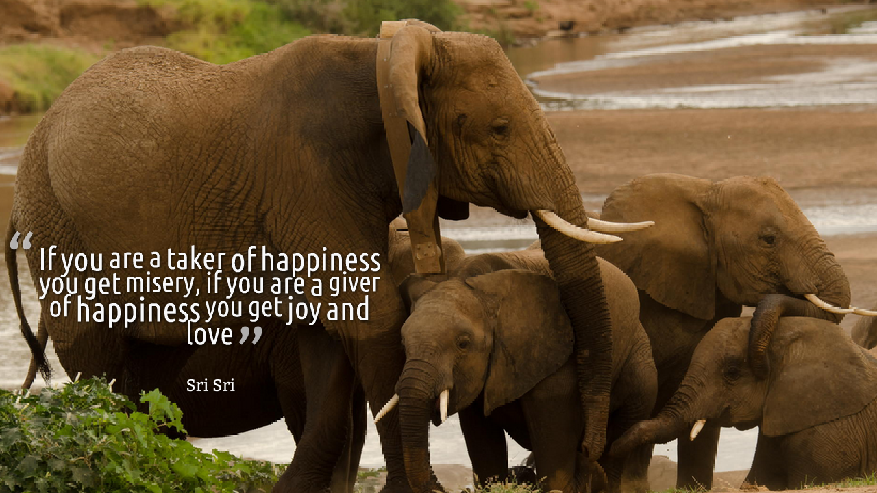 Here Is Collection Of Quotes By Sri Sri Ravi Shankar On Happiness