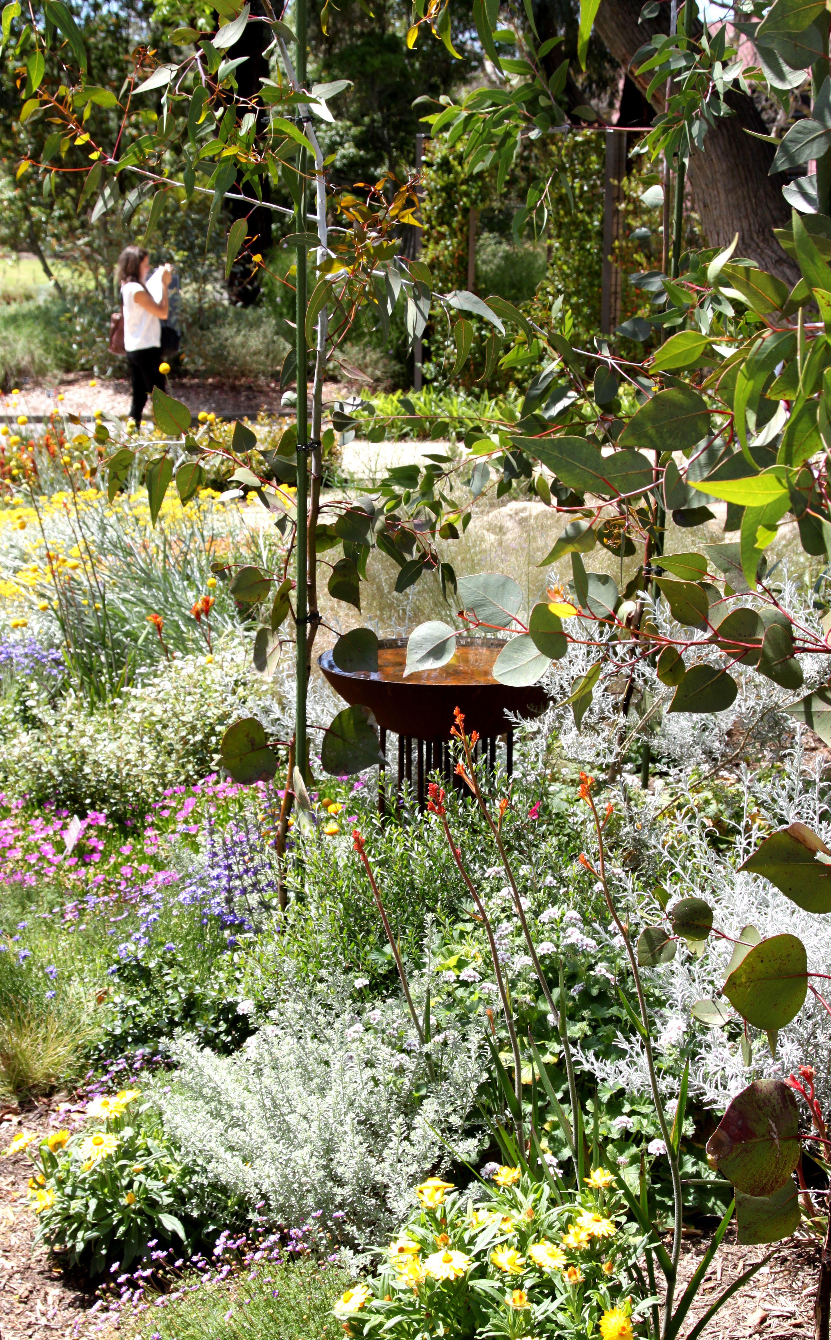 Adelaide Botanic Garden; The Australian Native Garden Is A