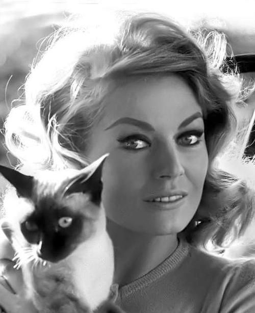 Anita Ekberg et son chat.