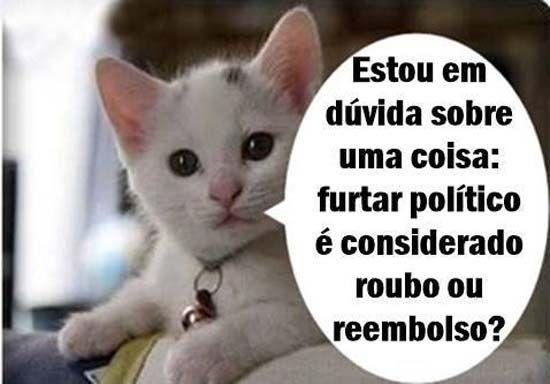 Frases Para Facebook Divertidas Gato Do Face K Humor Funny E