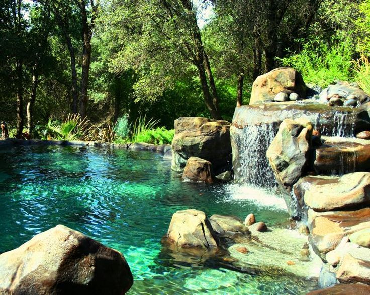 A Pool That Looks Like A Pond Google Search Sloping Gardens Pinterest Swimming Search