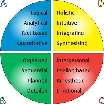 Circular chart showing the 4 sectors of the Whole Brain Thinking model