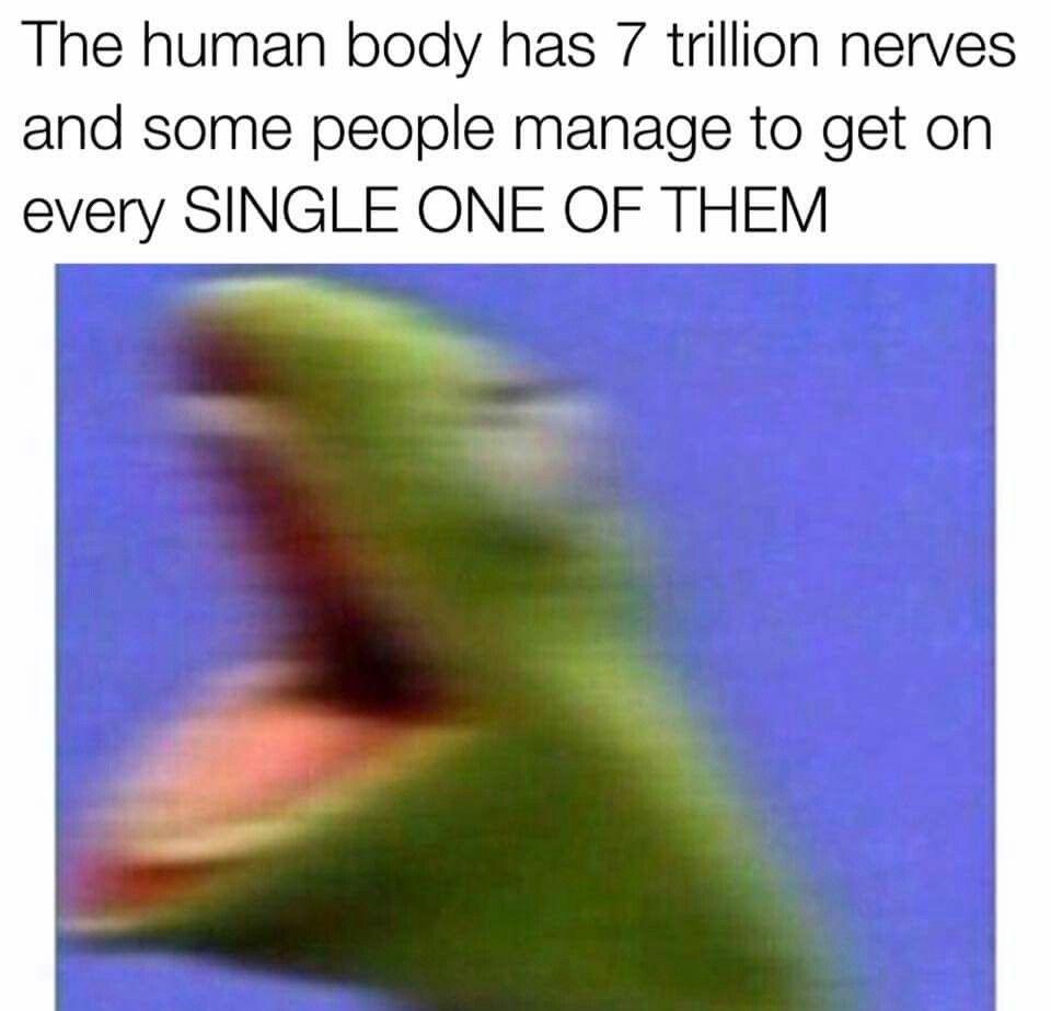 Haha Pinterest Ninarose15 Stupid Funny Memes Stupid Memes Funny Relatable Memes