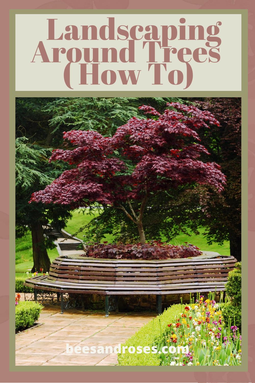 Pin On Shade Garden Ideas