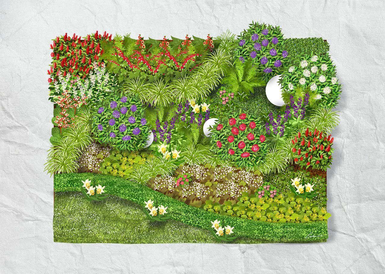 Schattenbeet | Garten | Pinterest | Schattenstauden, Prachtspiere ...