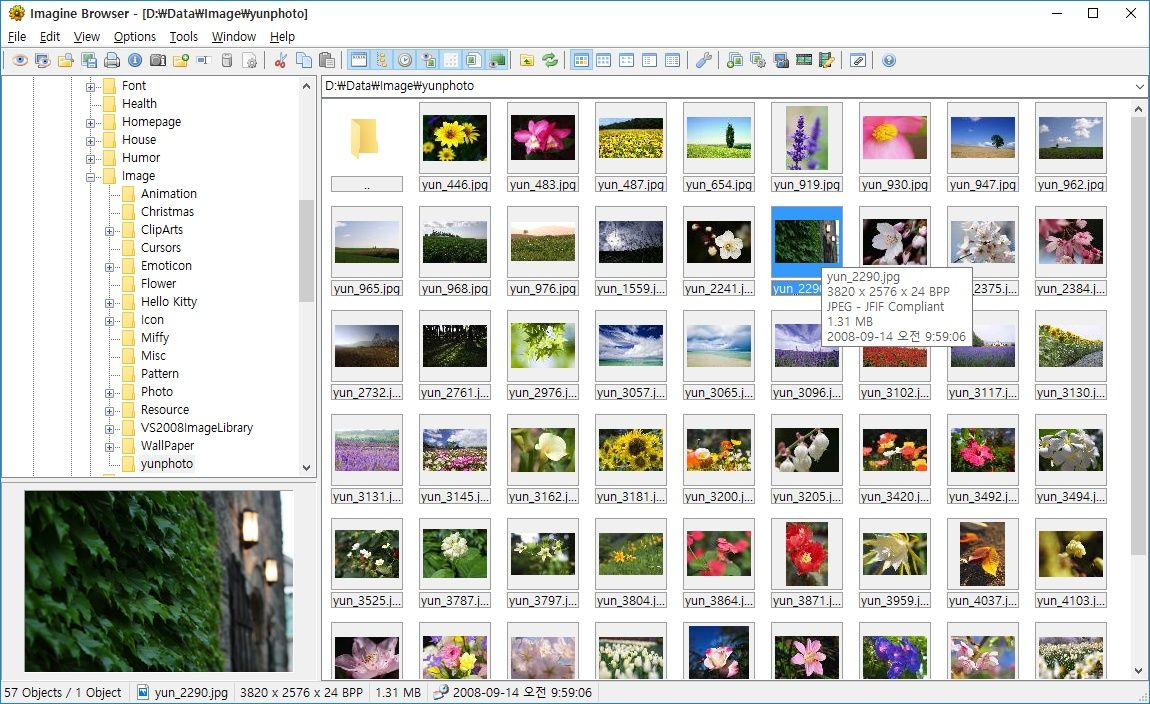 Freeware Image & Animation Viewer for Windows and includes