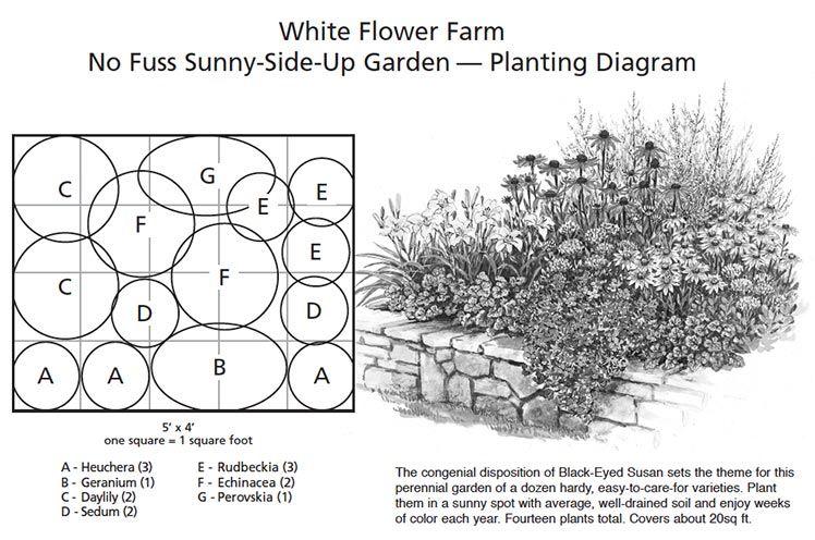 How To Design A Garden White Flower Farm Perennial Garden Design Heuchera