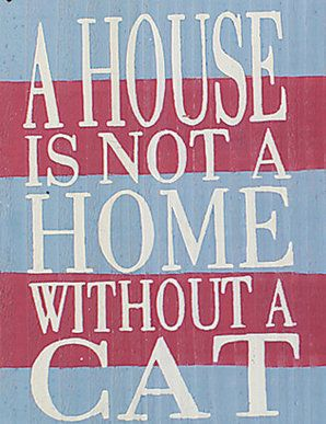 A House Is Not A Home Without A Cat Katzen Tiere Lebewesen