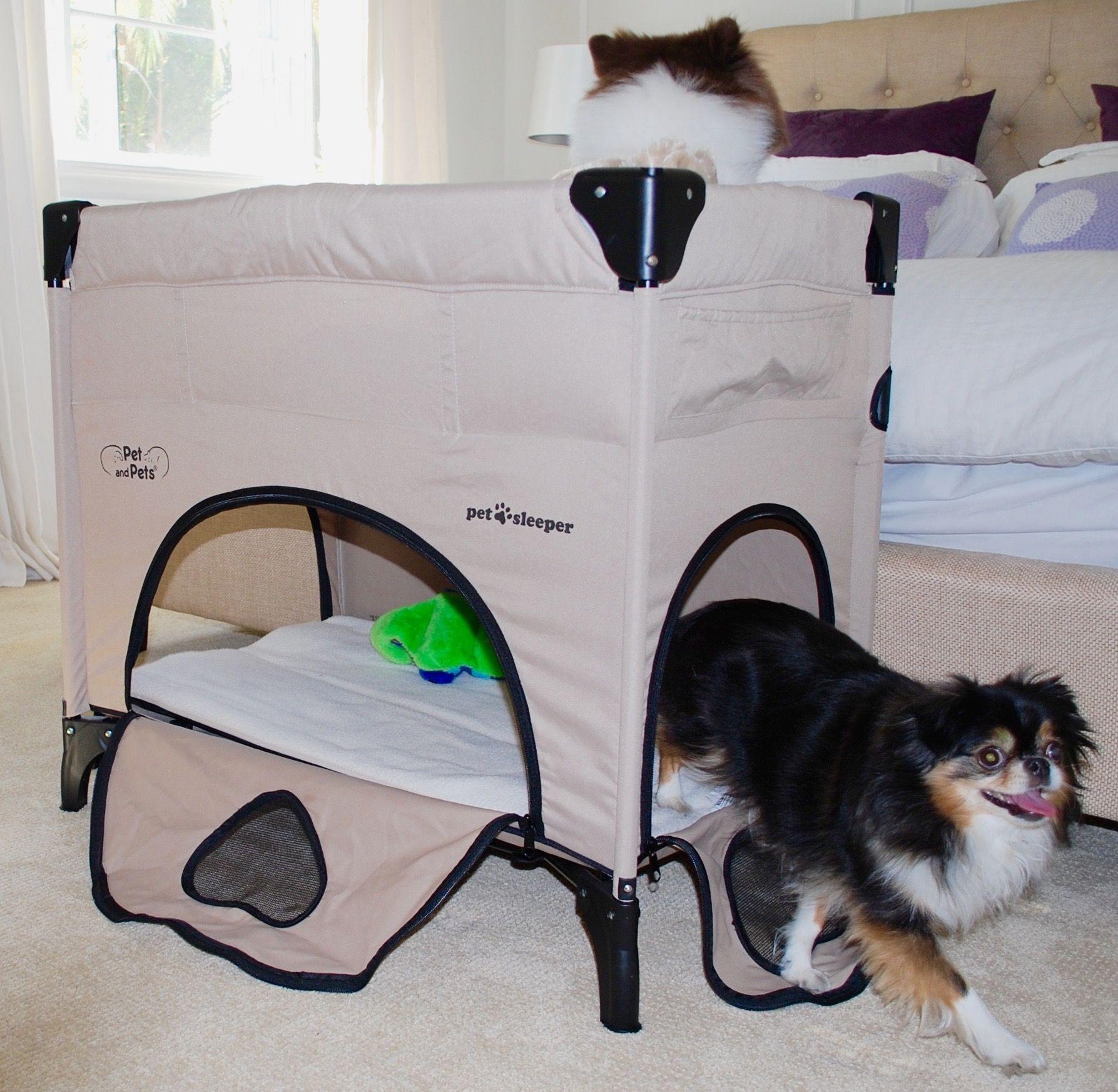 Pet And Pets Inc Small Pets Pets Luxury Pet