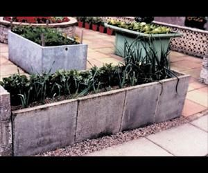 Raised Bed Paving Slabs With Images Garden Inspiration