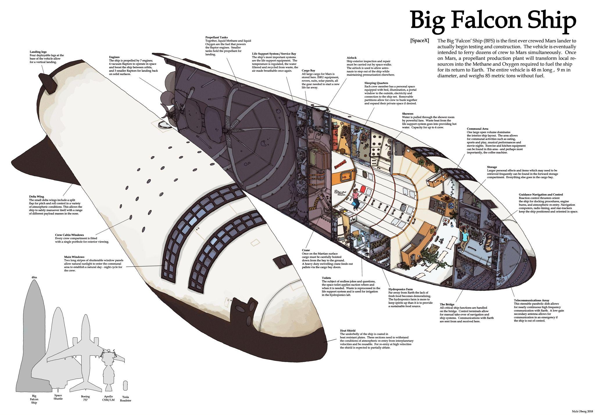 Cutaway+diagram+of+SpaceX+Big+Falcon+Ship+%28BFS%29_.jpg (2048×1428 ...