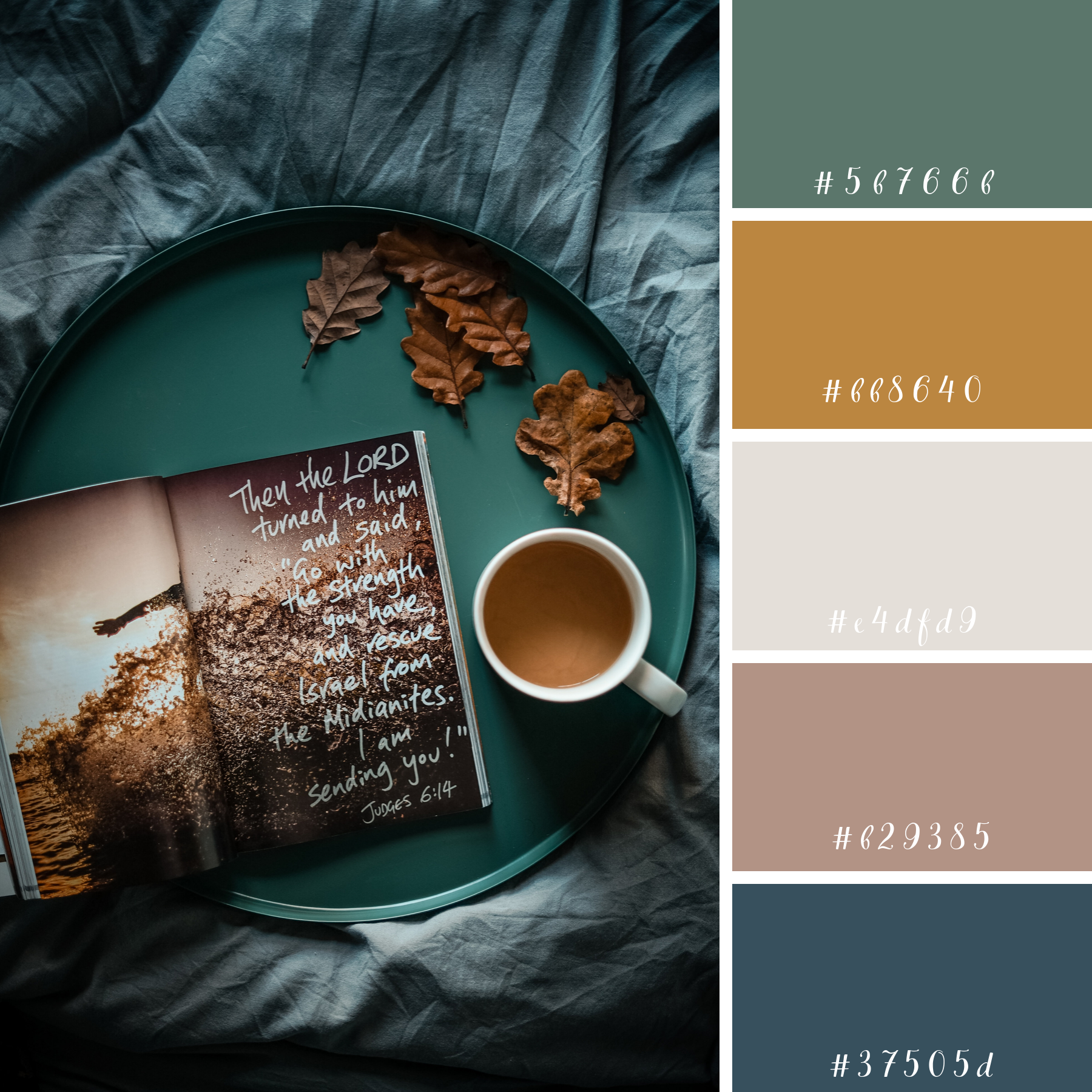 Moody Fall Palette – Blog