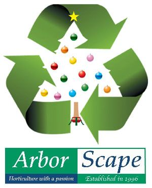 Denver Christmas Tree Recycling is back for another season! Only $20 for curbside pickup, starting right after Christmas on December 28.  We fill up quickly, so schedule your tree recycling today! How it Works After scheduling (call 303-806-TREE), you can simply leave