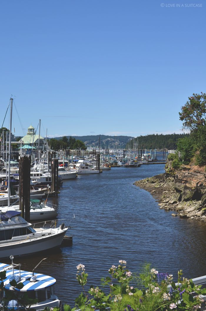 This past Sunday, we spent the afternoon out and about in Marc's hometown, Nanaimo, British Columbia. It was a beautiful day. So we stopped for lunch and a Nanaimo bar – the city's specialty – and a walk on the city's seawall. We had lunch as Delicado's, a little deli serving Southwestern food not too …