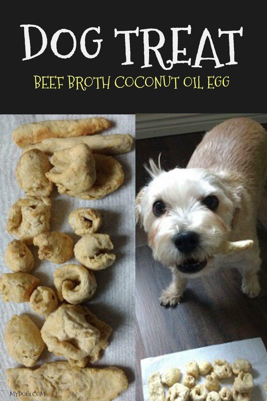 Dog Treat Egg Beef Broth Coconut Oil Puppy Stuff Dog